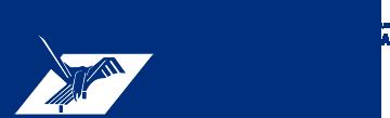 Sponsor Principal Aerostar Bacau